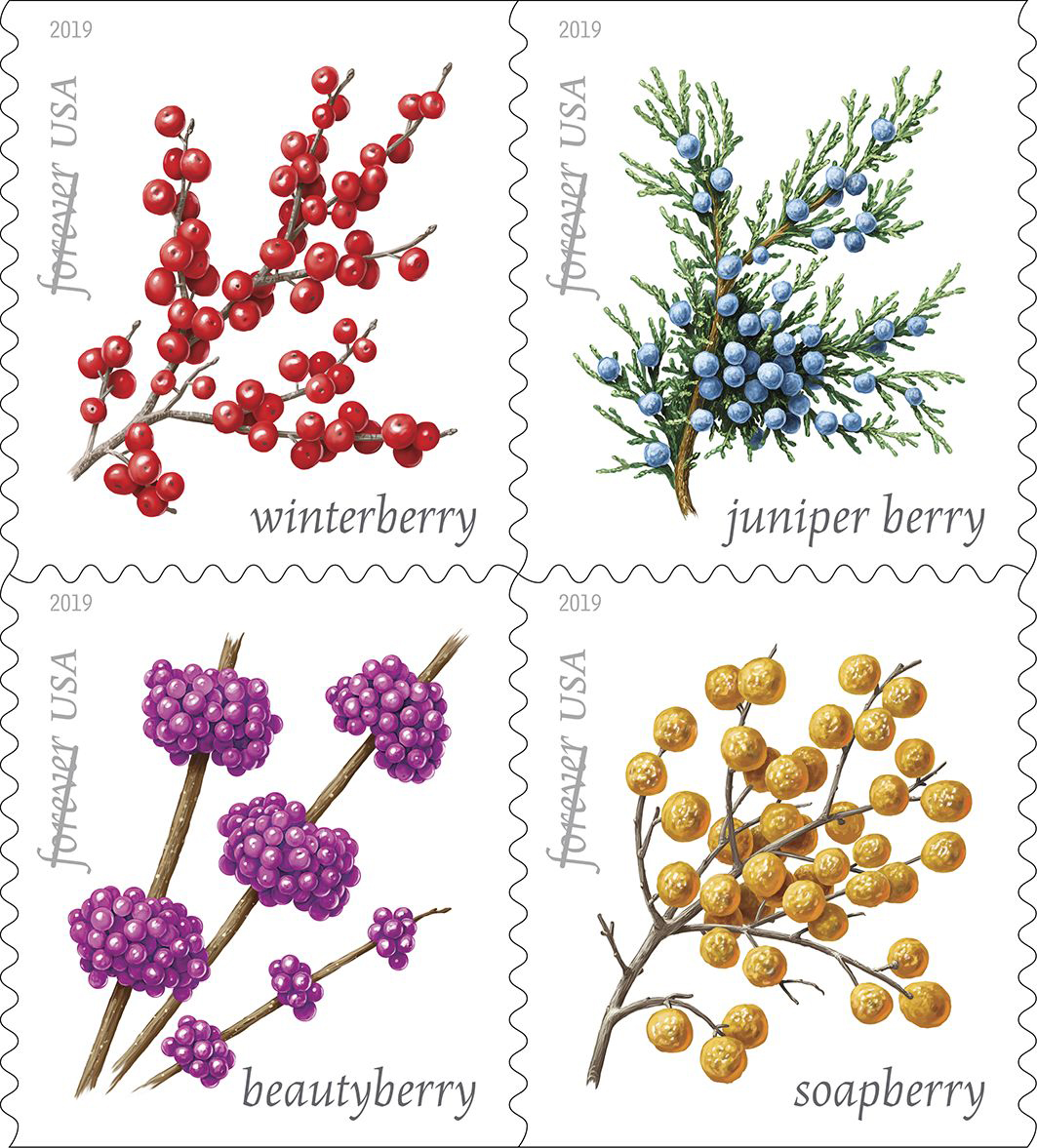 112018_blog-winter-berrys-USPS19STA003