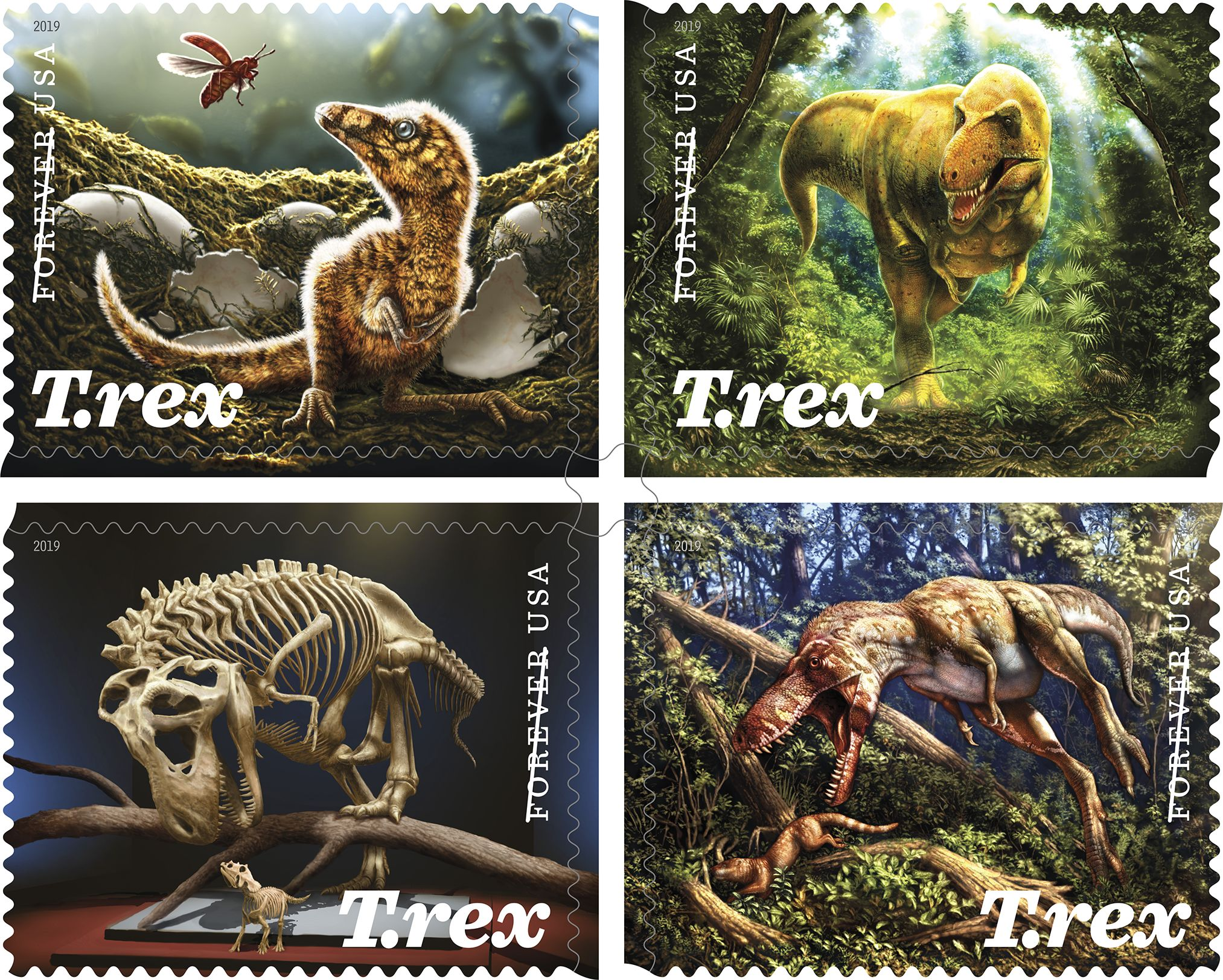 T-Rex Stamp Images-1