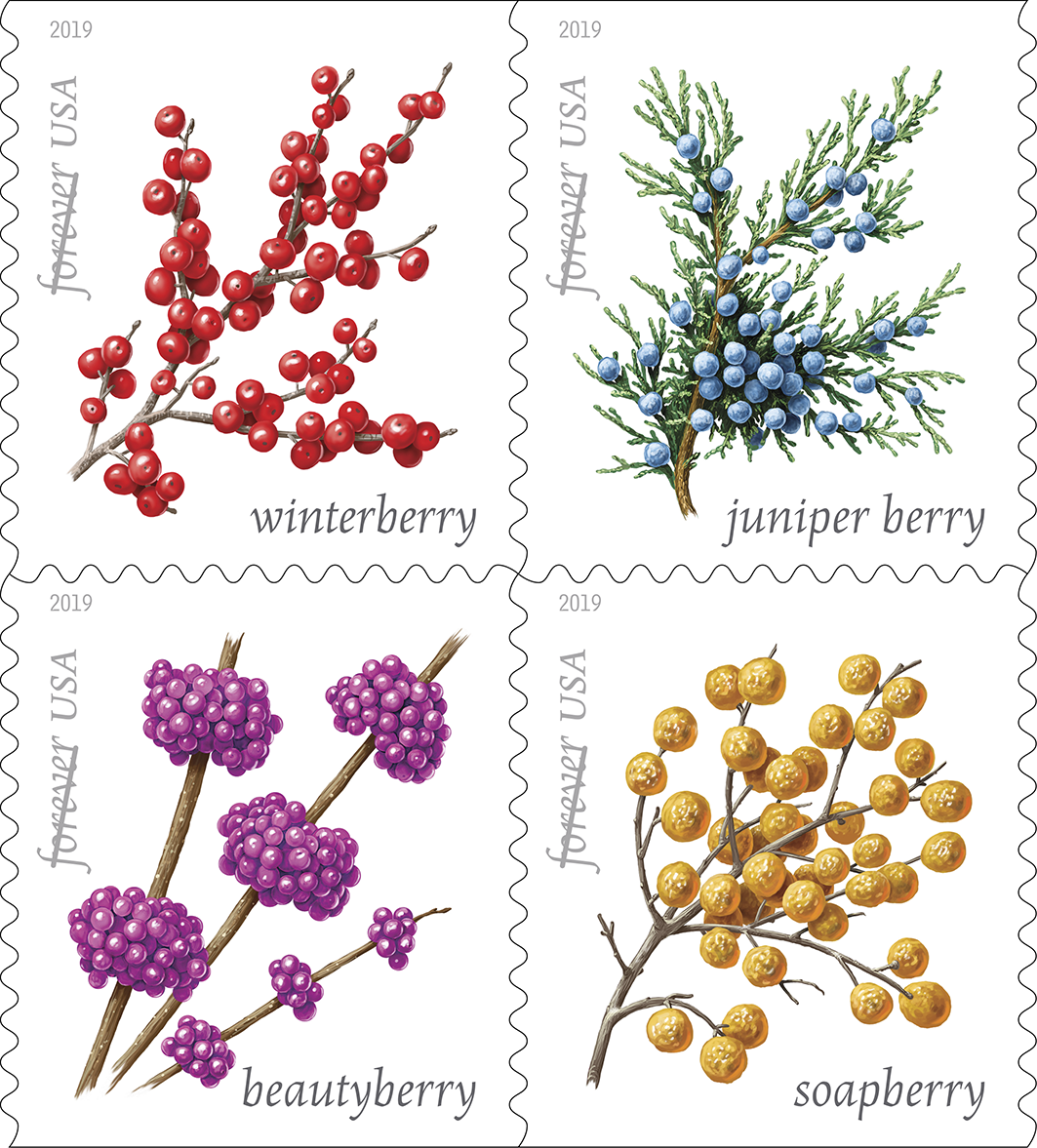 winter-berries-stamp-1