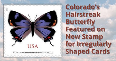 Colorado's Hairstreak Butterfly Featured on New Stamp for Irregularly Shaped Cards
