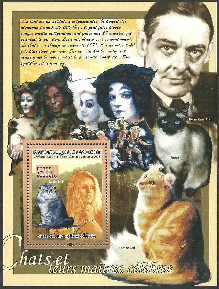 Guinea_Cats_musical_2008