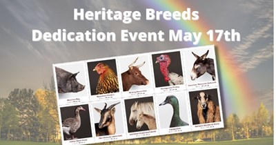 Stamp Series: Heritage Breeds First-Day-of-Issue May 17th
