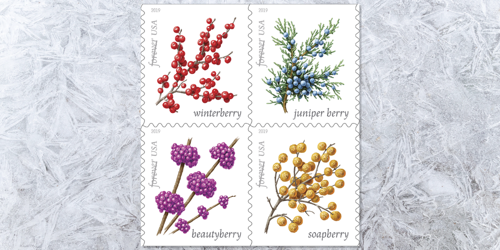 New Winter Berries Forever stamps wave goodbye to summer weather